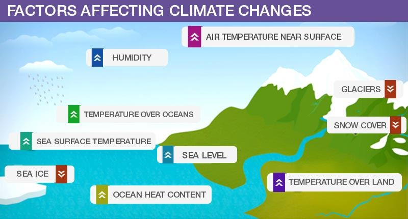 Effects Of Climate Changes