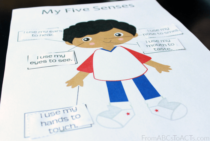 My Five Senses Cut And Paste Activity For Preschoolers
