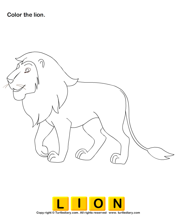 Lion Pictures For Kids Worksheet