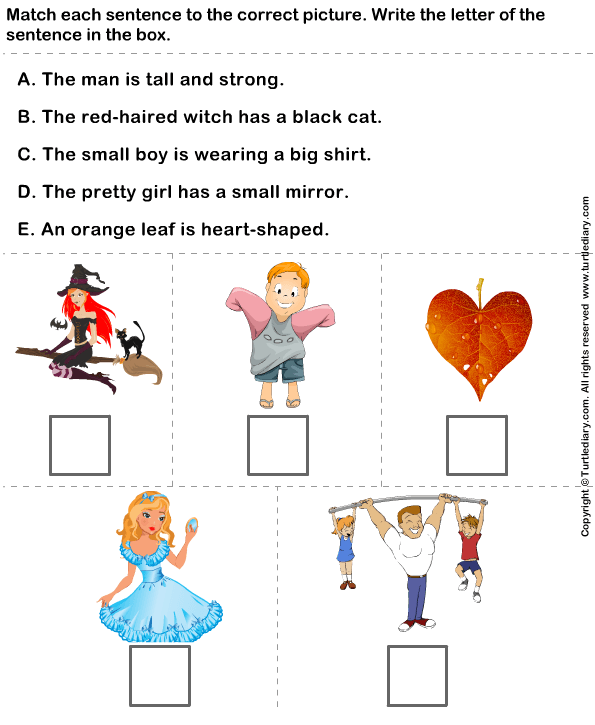Match Sentences With Correct Adjectives To Describe Pictures