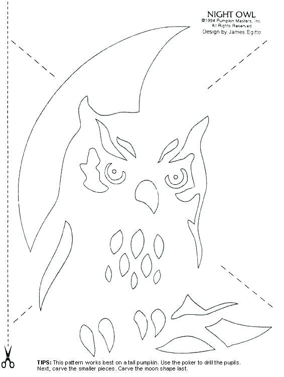 Owl Worksheets