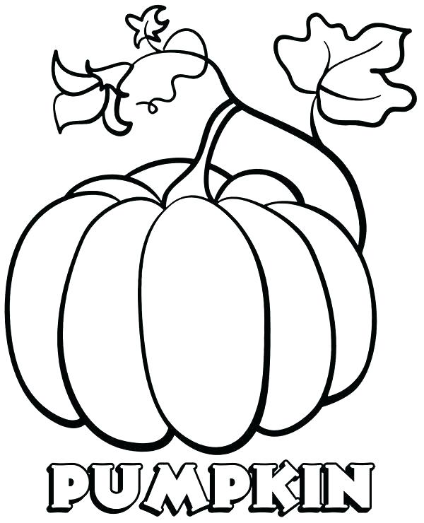 Pumpkin Coloring Pages Printable – Flower