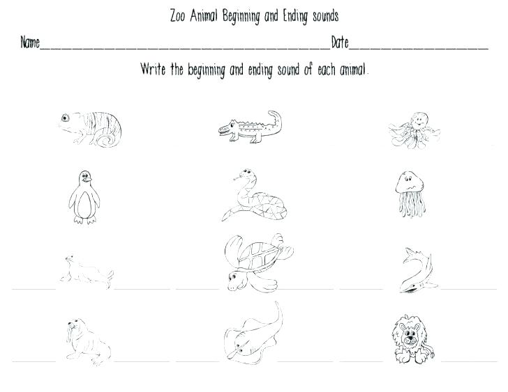 Saxon Math Worksheets Kindergarten
