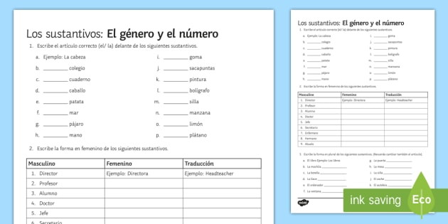 Nouns Gender And Number Worksheet   Worksheet