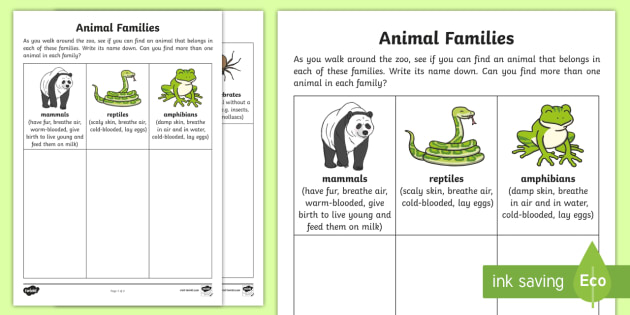 Animal Families Worksheet   Worksheet