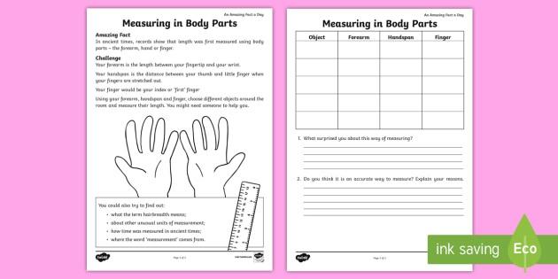 Measuring In Body Parts Worksheet   Worksheet