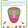 Taste Worksheets Kindergarten