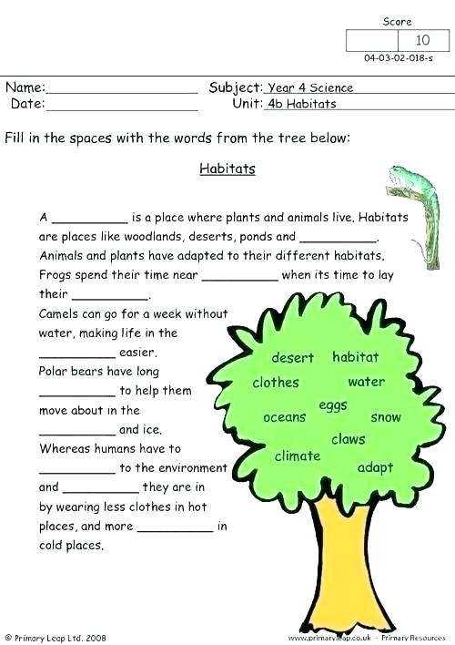 Year 4 Science Worksheets Habitats Worksheet Grade Primary 6