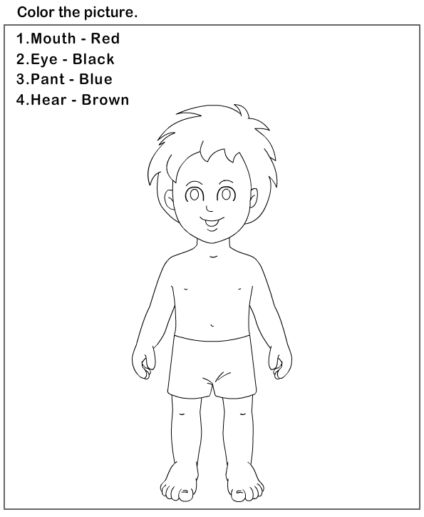 Preschool Worksheet Parts Of The Body