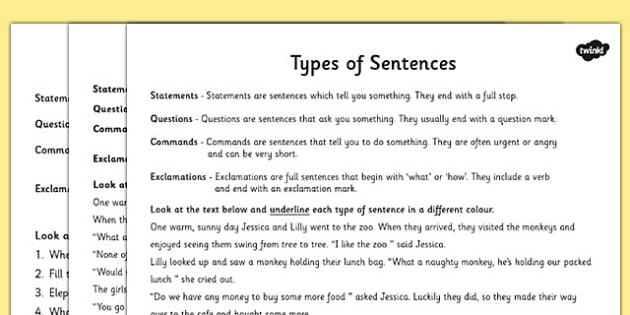 Types Of Sentences Differentiated Activity Worksheet