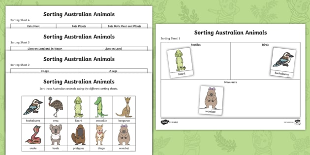 Part Of The Party  Sorting Australian Animals Worksheets
