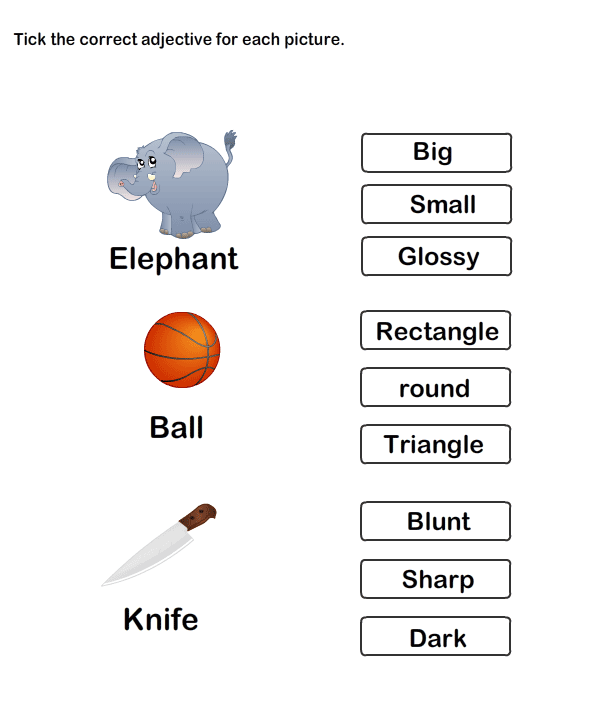 Describing Words Worksheet12