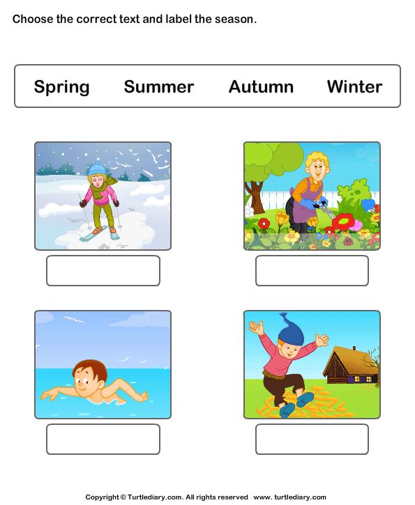 Seasons Of The Year Worksheets Worksheet