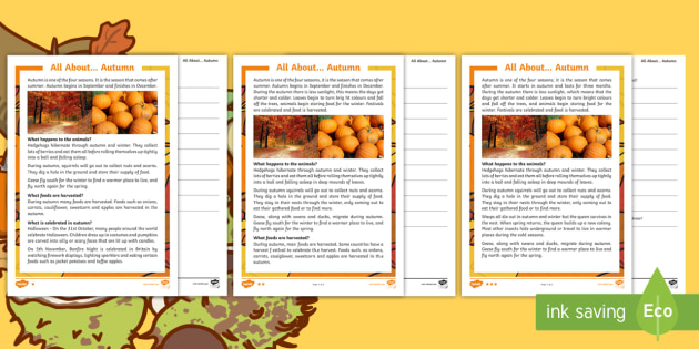 Autumn Differentiated Reading Comprehension Worksheet   Worksheet Pack